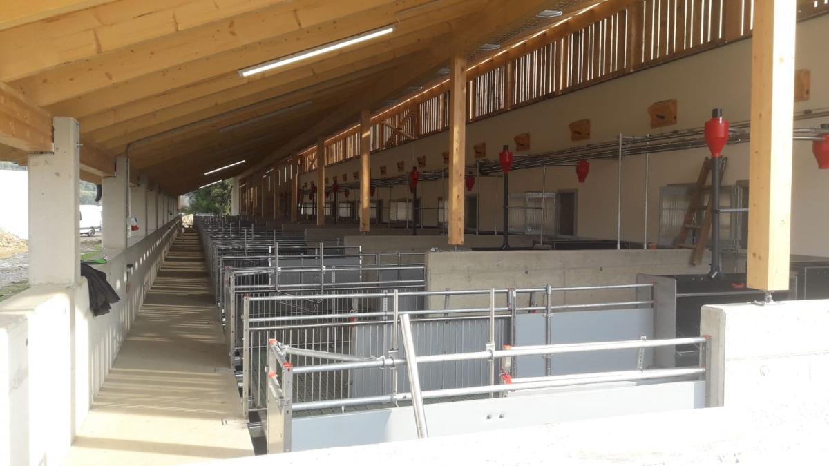 JAGA's Tierwohl-Kräuterschweine beziehen neues Schweinehotel